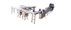 Automatic Feeding and Packaging Line